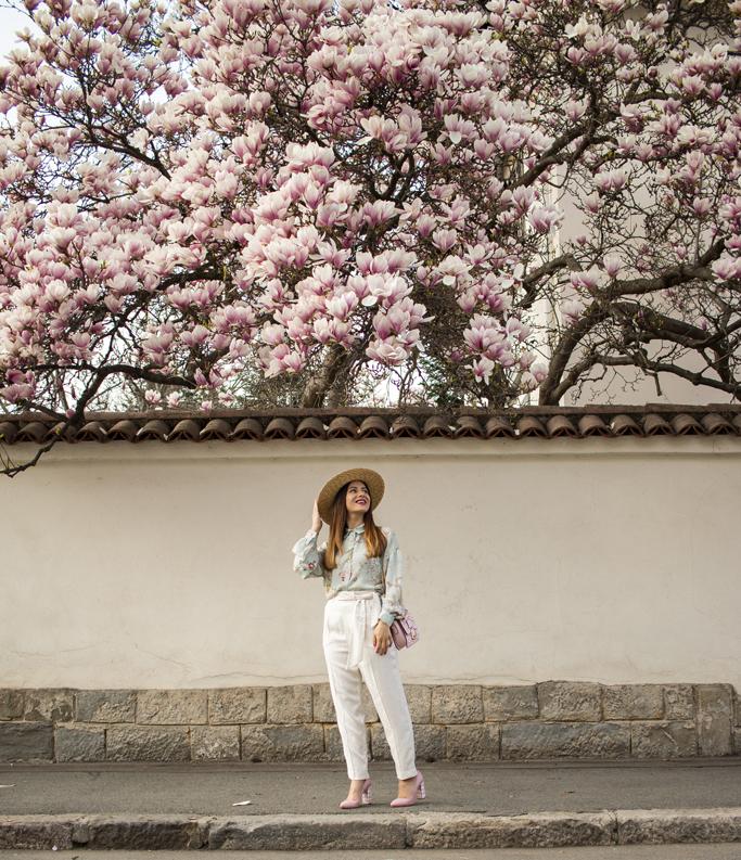 adina nanes magnolias