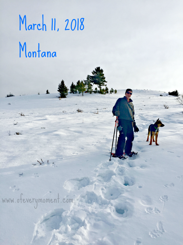 Snowshoeing with our puppy in March