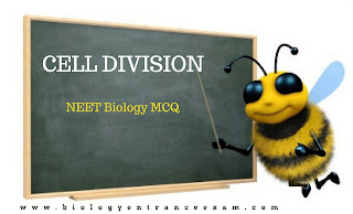NEET Biology MCQ on Cell division