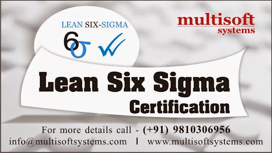 Optimum Productivity with Six Sigma ~ Certified PMP Training Course