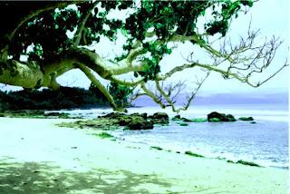 pantai wediombo