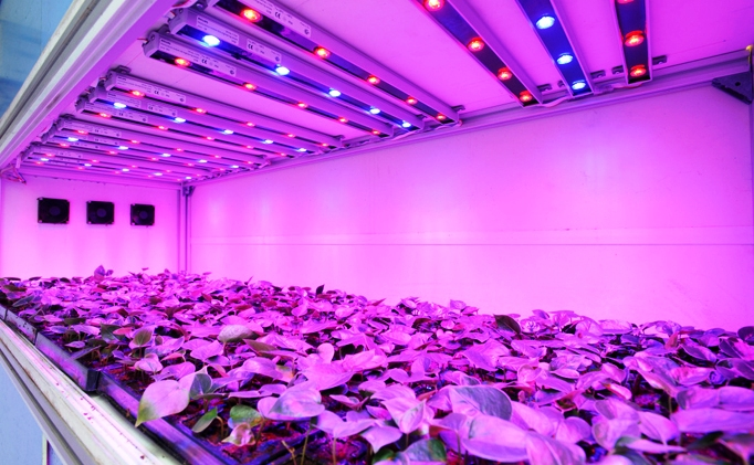 technology every plant indoor to lights led light grow plans allows which