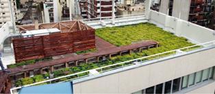 """Neuquén quiere transformarse en la primer ciudad sustentable de la Patagonia. Los llamados """"techos verdes"""" forman parte de una tendencia que consiste en la instalación de vegetación en las terrazas de los edificios, fábricas o casas con el fin de reducir el consumo energético de los edificios."""