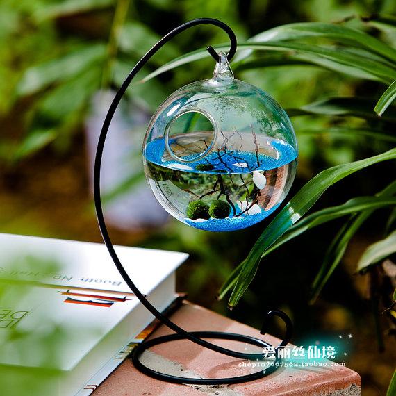 "Mini Aquarium kit - 2 Moss Balls Glass Pebbles Little Fan Coral in a 3.5"" Orb Terrarium Hang with Bent Metal Stand for Work Desk Decoration | $16.60+"