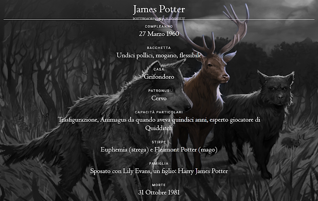 Scheda di James Potter
