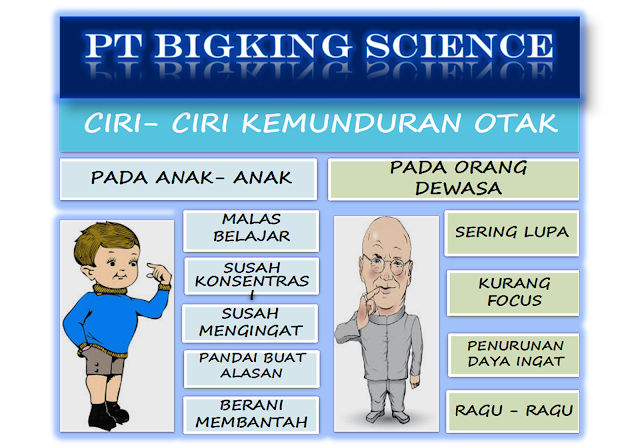 brainking plus >> 08123 01 8900