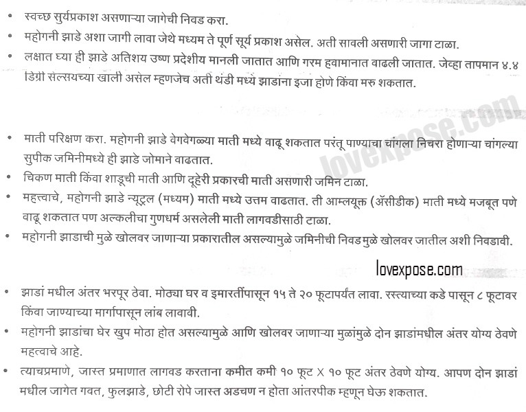 Essay on tree plantation in marathi