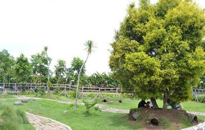Harga Ticket Masuk Taman Kelinci Ciwidey Bandung