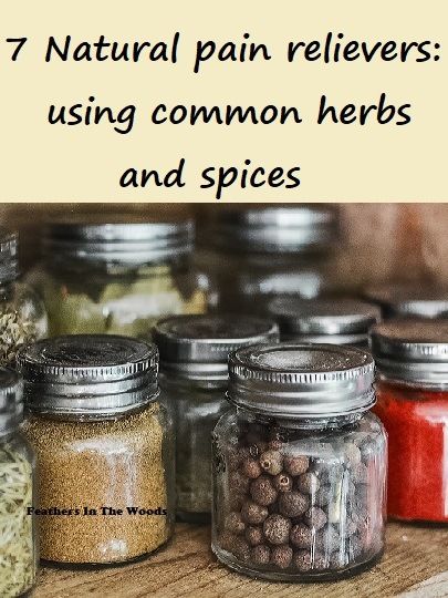 common herbs and spices in jars for use in natural pain relief