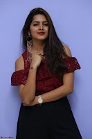 Pavani Gangireddy in Cute Black Skirt Maroon Top at 9 Movie Teaser Launch 5th May 2017  Exclusive 087.JPG