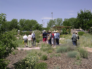 Photo of a group of people in a garden looking at plants
