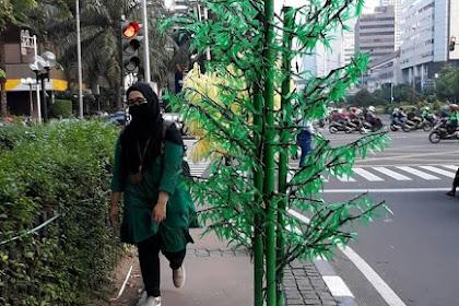 Anies Marah Jajarannya Pasang Pohon Imitasi Di Tengah Trotoar