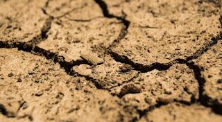 Breves notas sobre el Decreto-Ley de medidas urgentes contra la sequía