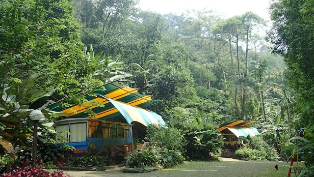 safari lodge caravan taman safari indonesia