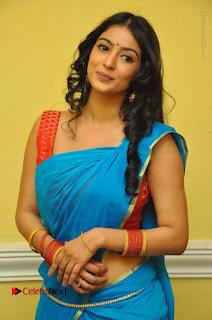 Telugu Actress Vaibhavi Stills in Blue Saree at Www.Meena Bazaar Movie Opening  0051.JPG