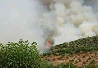 Ζωντάνεψε τον εφιάλτη του 2007 η μεγάλη πυρκαγιά στη Ζαχάρω