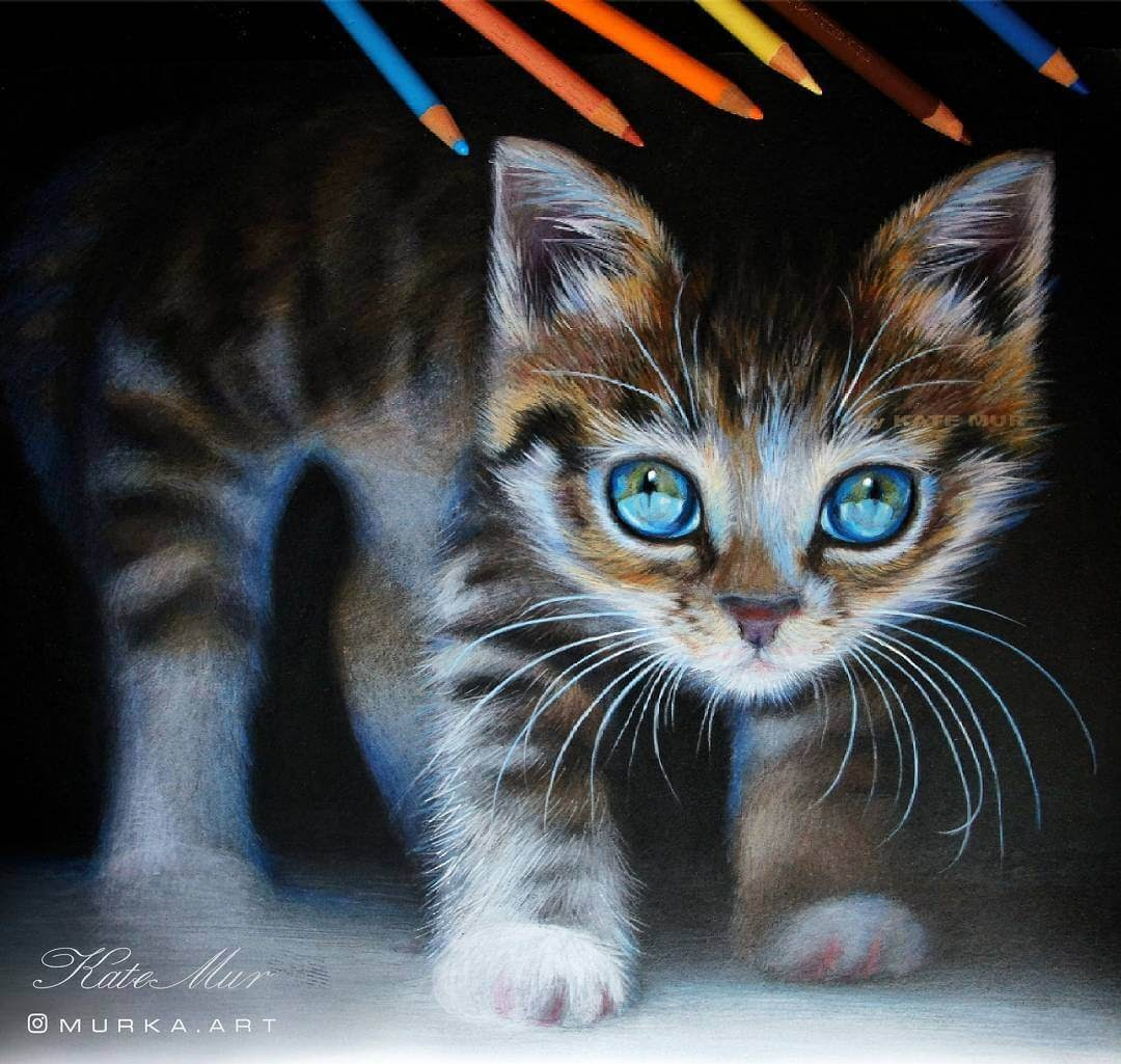 08-Curious-Kitten-Kate-Mur-Animal-Art-with-Pencil-Ballpoint-Pen-and-Paint-www-designstack-co