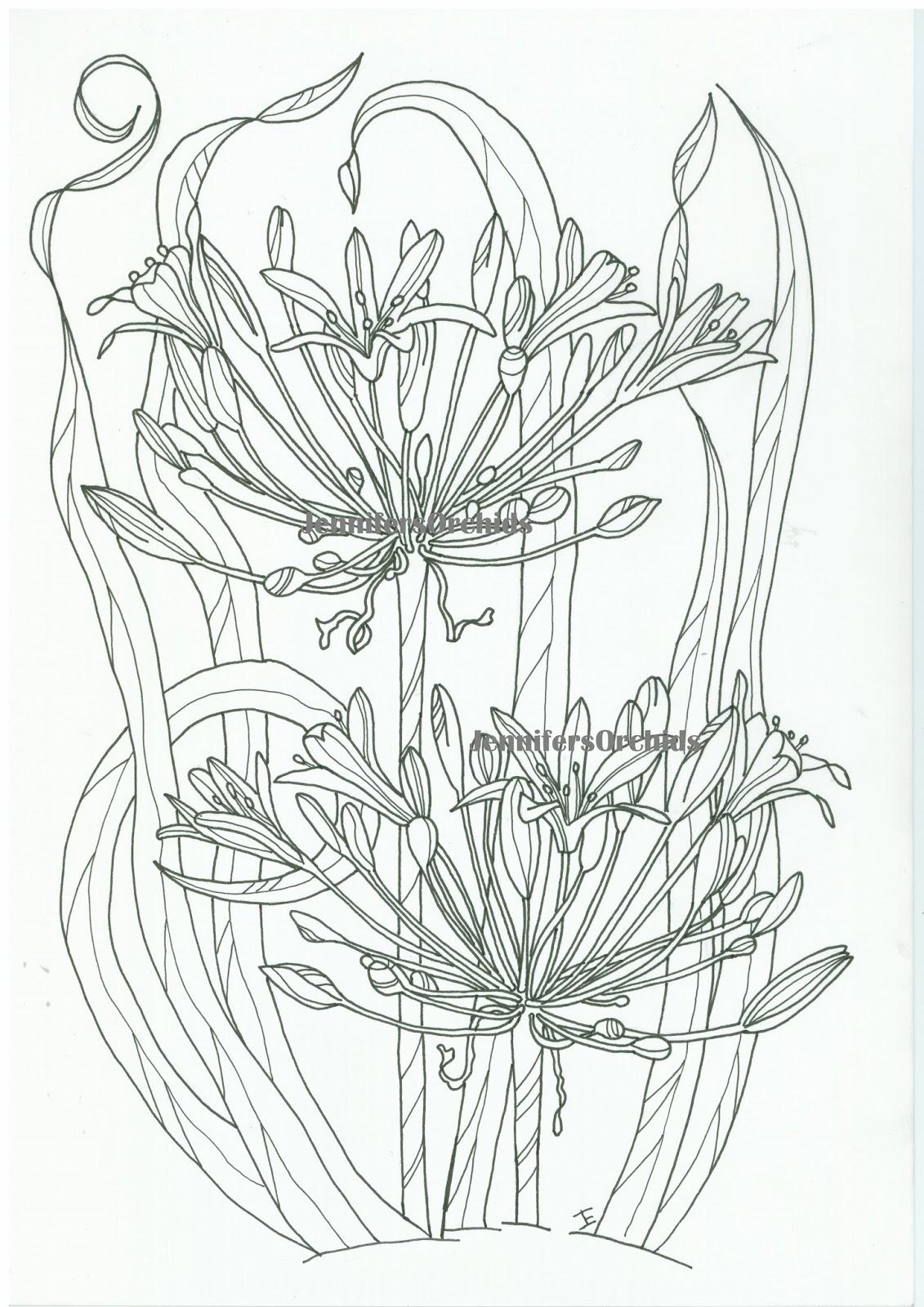 kleurplaten volwassenen bloemen cji17 agbc