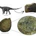 Tumor ósseo é achado na cauda de um dinossauro brasileiro