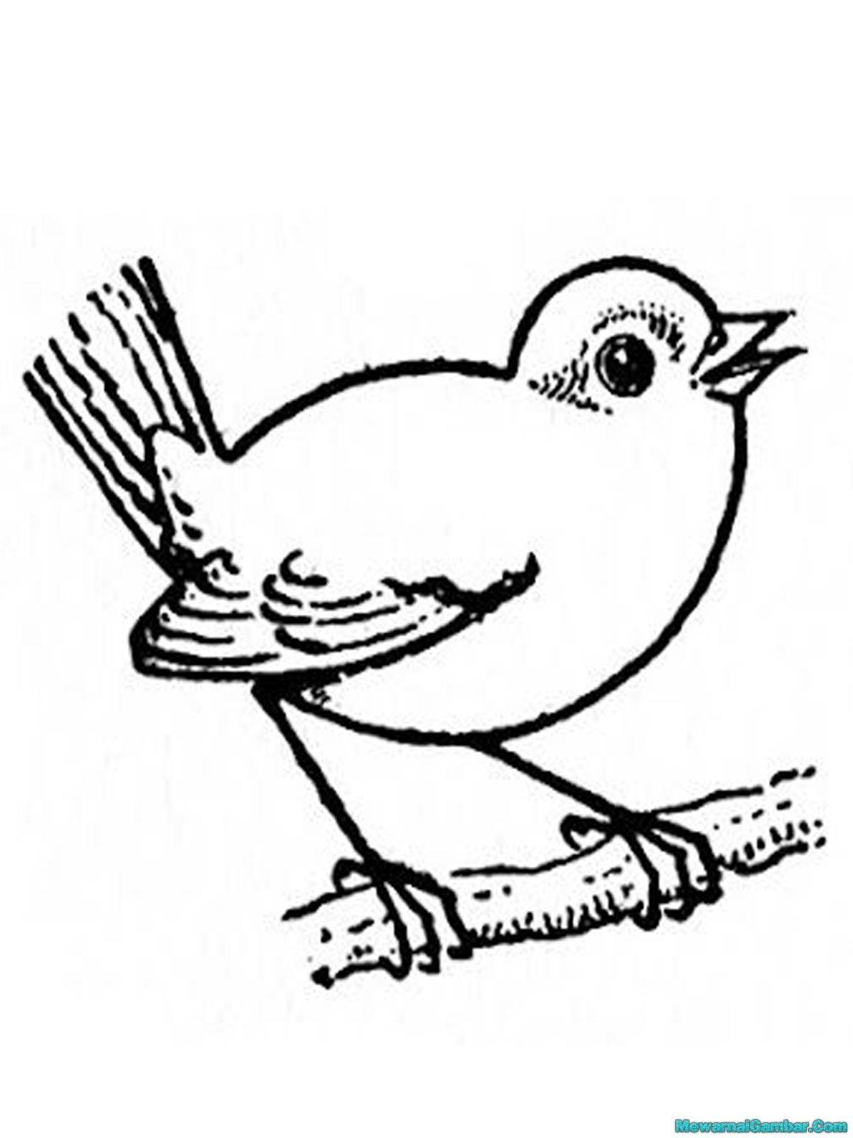 Gambar Contoh Mewarnai Gambar Burung Diwarnai Di Rebanas
