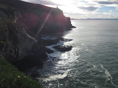 Vistas del faro Taiaroa Head. Península de Otago, en Nueva Zelanda