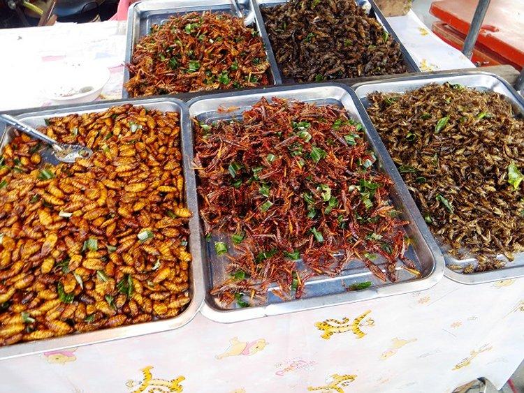 жаренные насекомые Таиланд