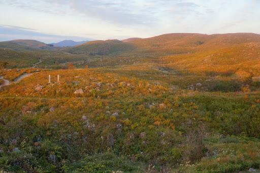 自然が作り出した、山口県一の絶景。秋芳洞とカルスト大地【Yamaguchi】 草紅葉
