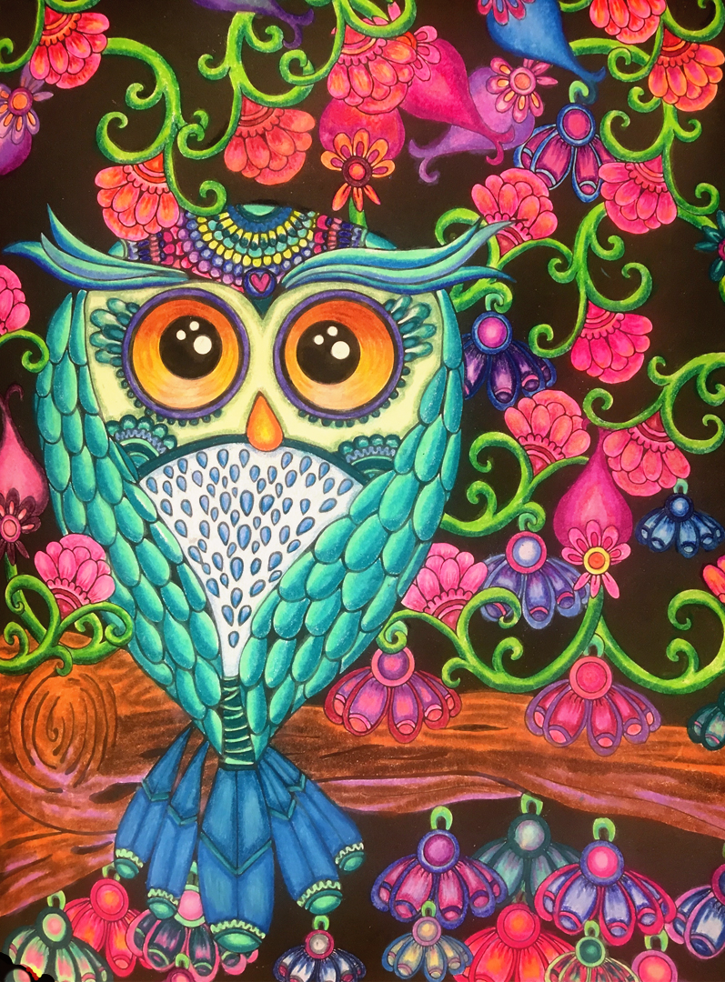 Coloring pages already colored - Owl Coloring Page