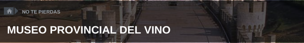 Museo del vino en el castillo de Peñafiel