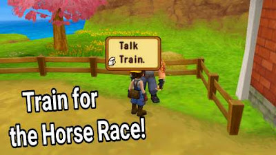 How to Train for the Horse Race Harvest Moon: Hero of Leaf Valley