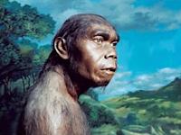 Manusia Purba di Indonesia, Asia dan Afrika (Pengertian dan Ciri-ciri) Lengkap