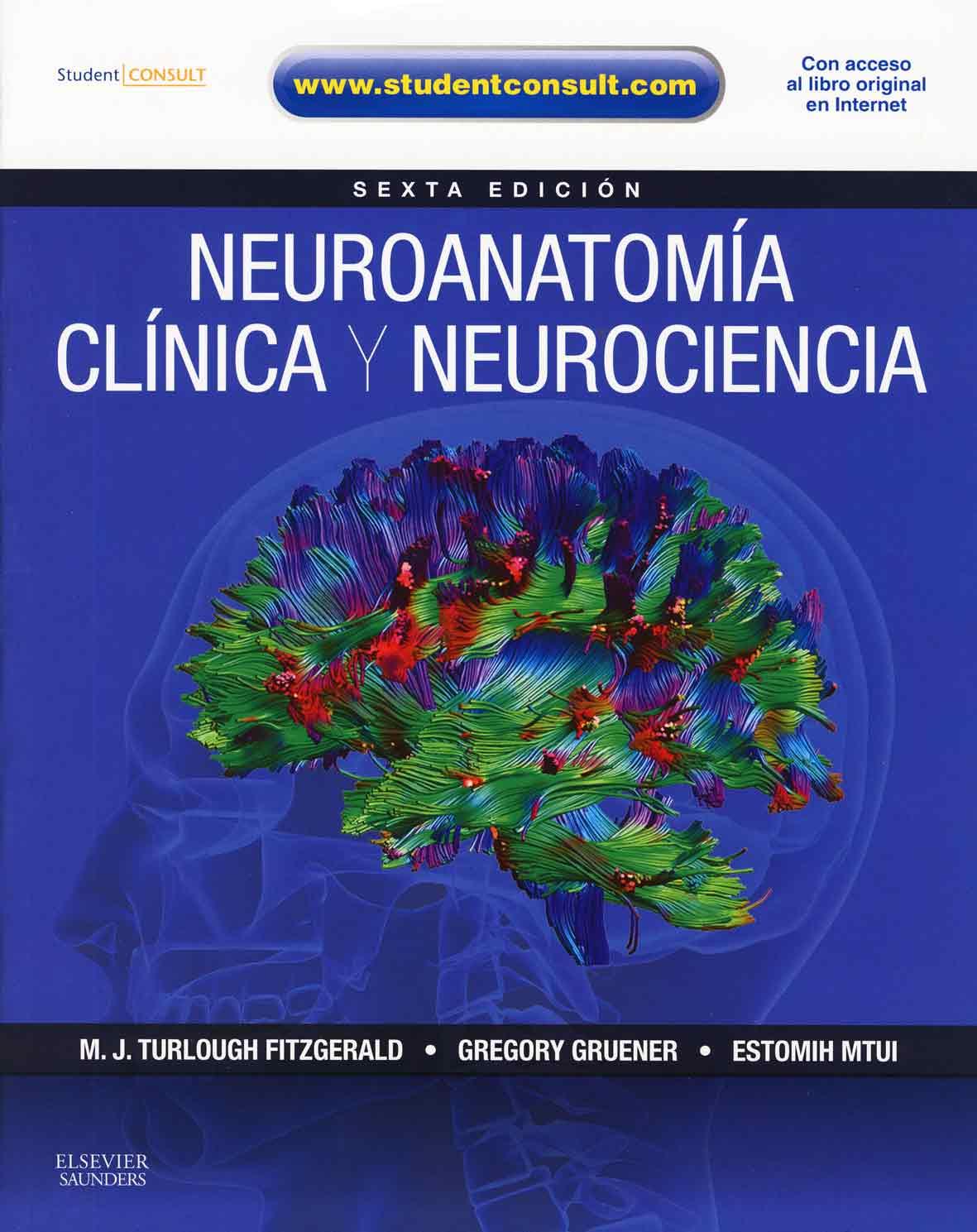 Principios De Neurociencia Haines Epub