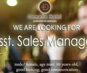 Lowongan Kerja Asst Sales Manager di Demelia Hotel