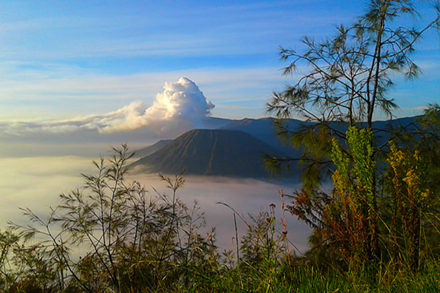 Mount Bromo, Sunrise mount bromo, mount bromo Java, Bromo ijen tours, ijen bromo from bali, bromo ijen from surabaya.