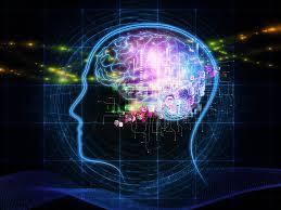 Amazing fact about human brain in hindi  [ दिमाग से जुडे कुछ  तथ्य]