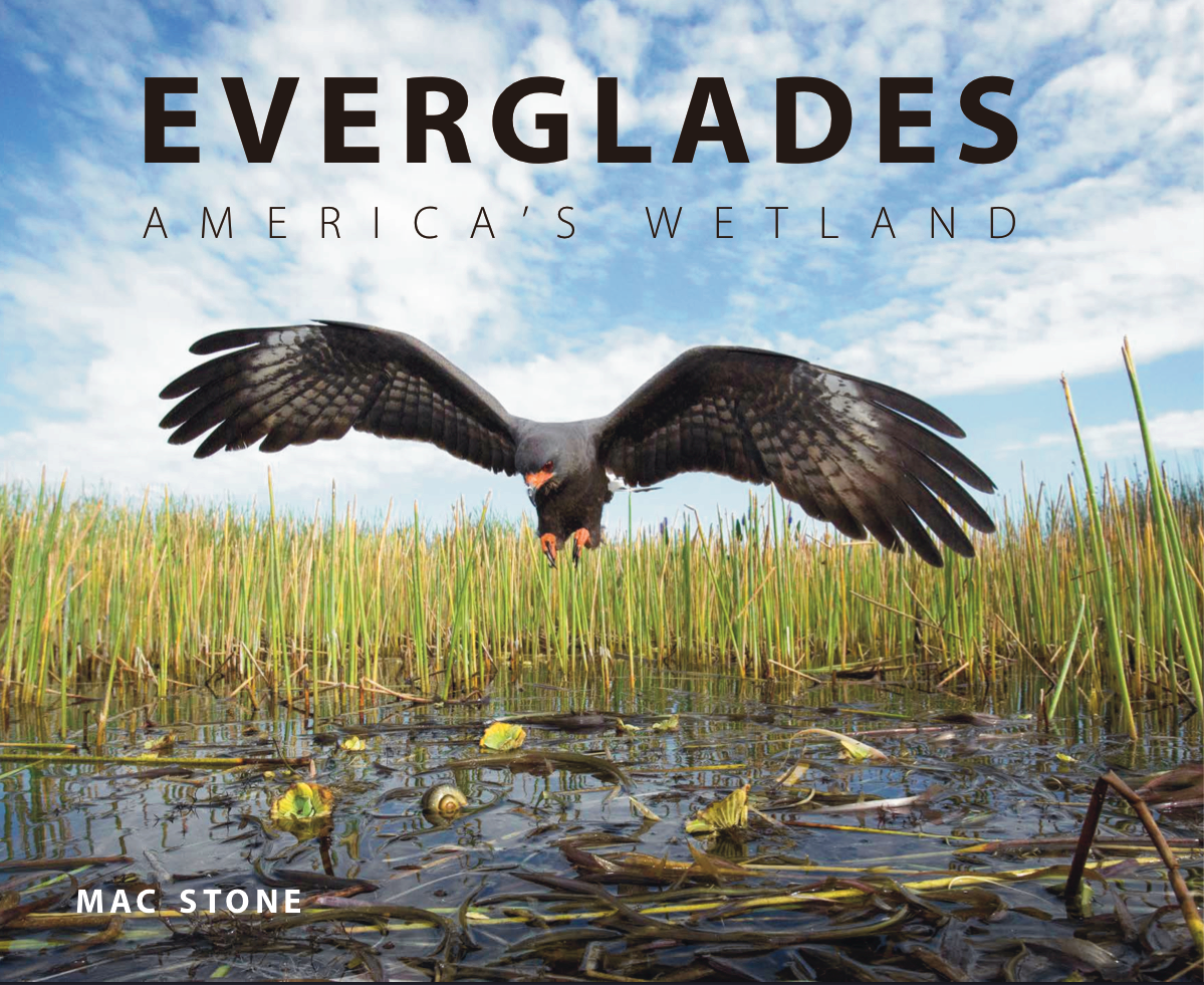 Everglades America's Wetland photography book by Mac Stone