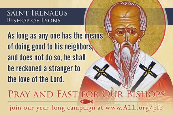 catholic news world   saint june 28   st  irenaeus of lyons    bishop and father of the  church