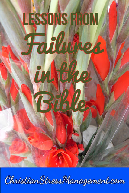 Bible Study Lessons from Failures in the Bible