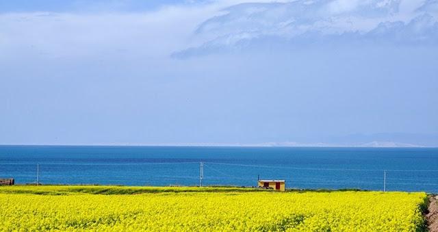 青藏鐵路沿途風光-青海湖