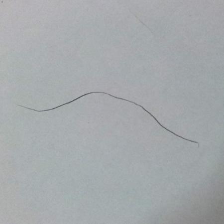 陰毛手描きの図