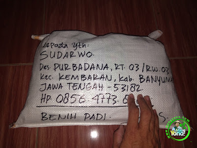 Benih Padi TRISAKTI Pesanan SUDARWO Banyumas, Jateng.  (Sesudah di Packing)
