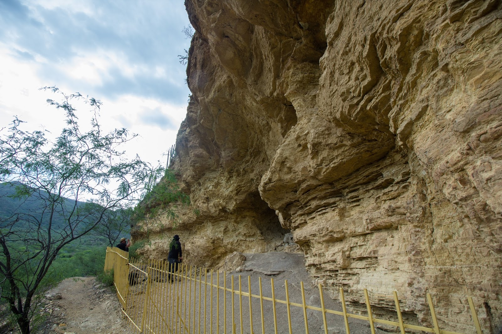 En Coxcatlán cuna del maíz, se encontraron los testimonios más antiguos de la domesticación del maíz.