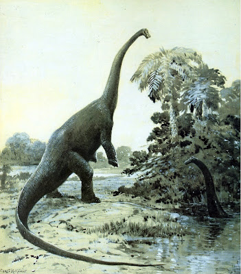 Was the sauropod dinosaurs' large size due to plant food?