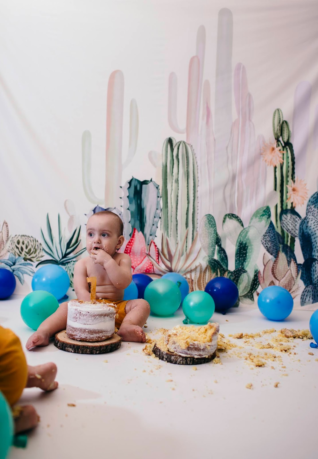 Twin First Birthday Cake Smash