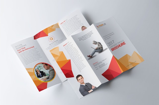 Professional, Trifold Brochure, Collection, Download, print, template