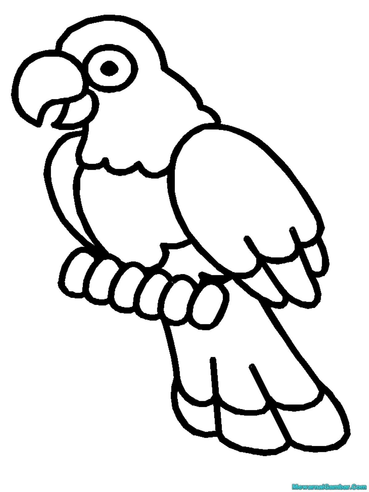Download 15 Gambar Burung Untuk Diwarnai Mewarnai Gambar