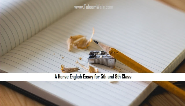A Horse English Essay for 5th and 8th Class