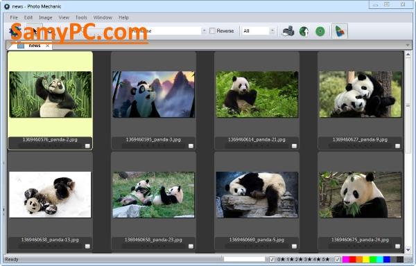 Photo Mechanic Free Download Full Version