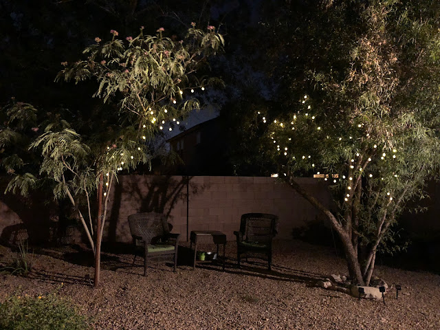 night backyard view