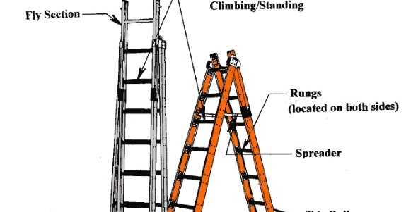 Hsedot Com Types Of Ladders Amp Guidelines For Tagging A Ladder
